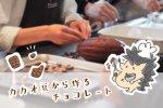 【東京都渋谷区】Miminalでカカオ豆からのチョコレートづくりワークショップに参加したよ!