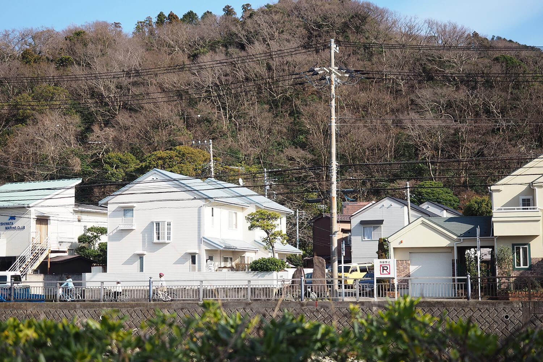 富士見橋から桜山を見上げる