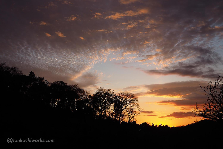 桜山からの夕日